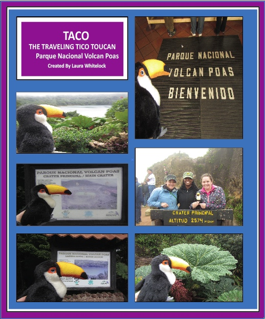 Taco the Traveling Tico Toucan goes to Poas Volcano!